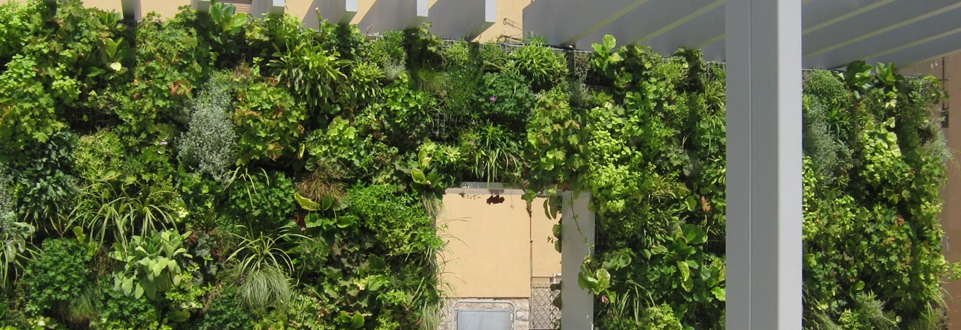 Peverelli Design, Construction And Maintenance Of Green   Vertical Garden