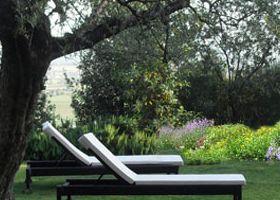 8. giardino  sulle colline Beneventane